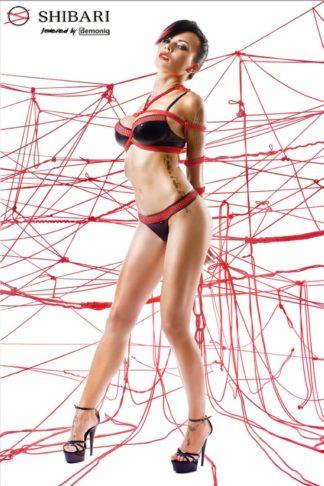 Комплект с красным тиснением Masuyo с веревками для связывания (Shibari)